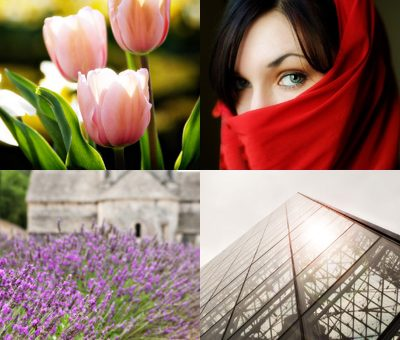 flowers, woman, lavender, louvre pyramid