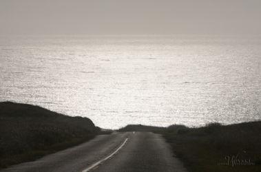 pierce point road